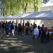 Termelői piac Zamárdiban!